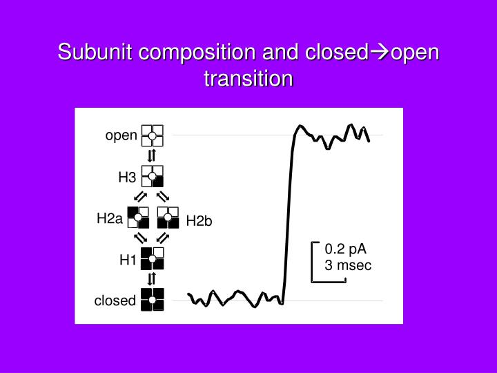 Subunit composition and closed