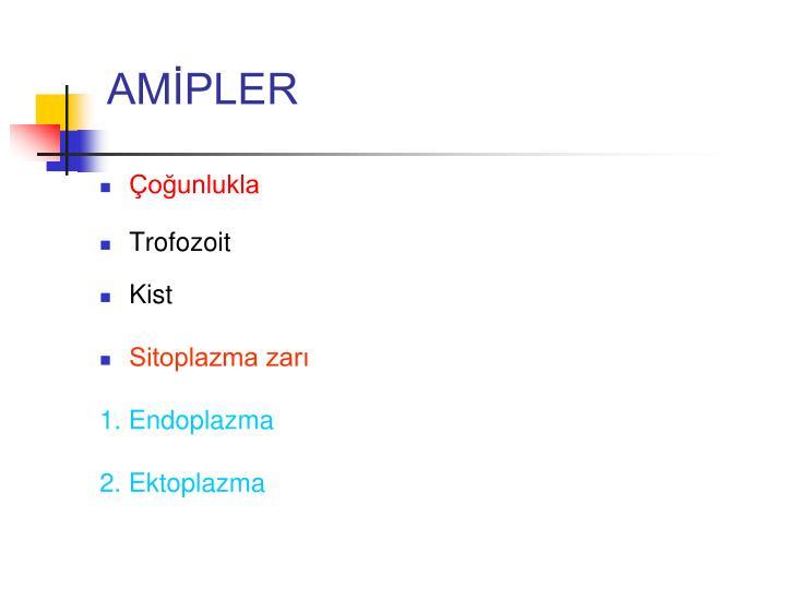 AMİPLER