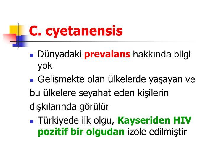 C. cyetanensis