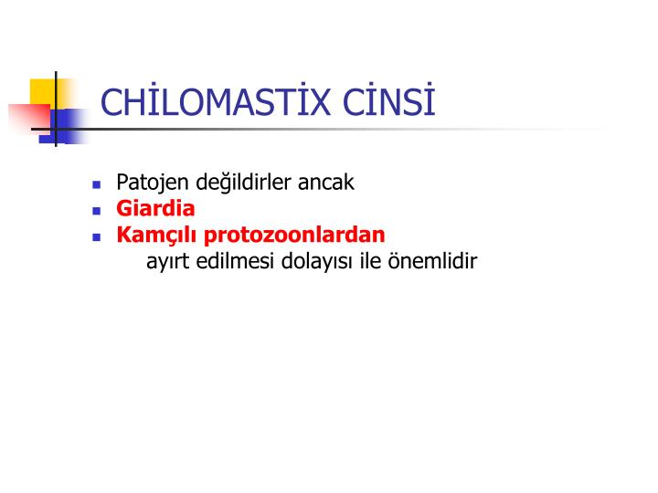 CHİLOMASTİX CİNSİ