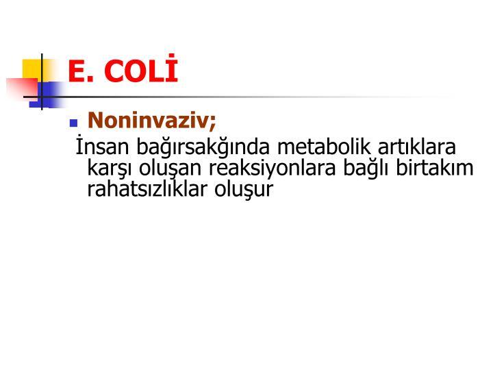 E. COLİ