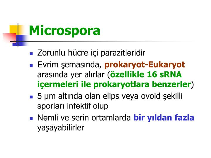 Microspora
