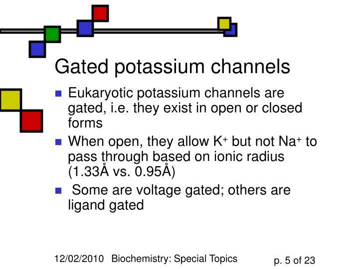 Gated potassium channels