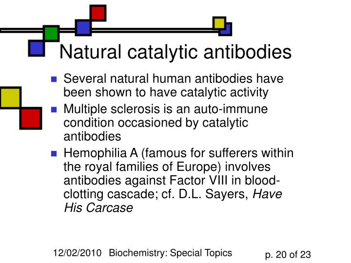 Natural catalytic antibodies