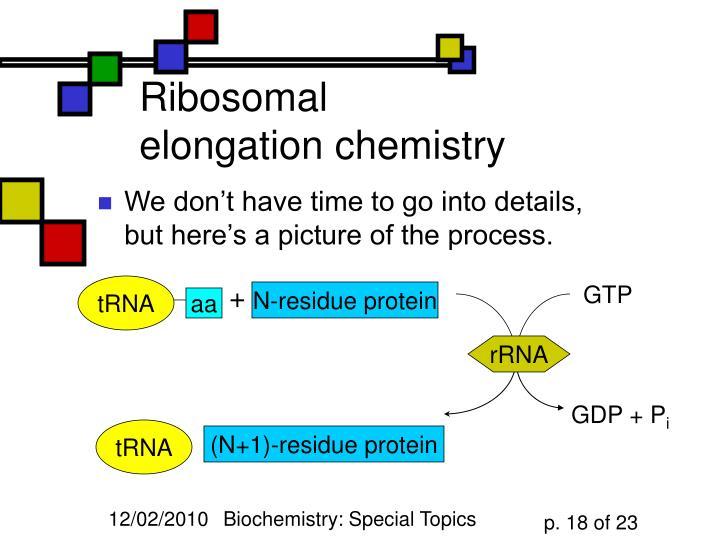 Ribosomal elongation chemistry