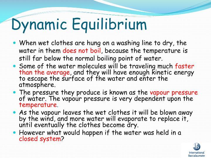Dynamic Equilibrium