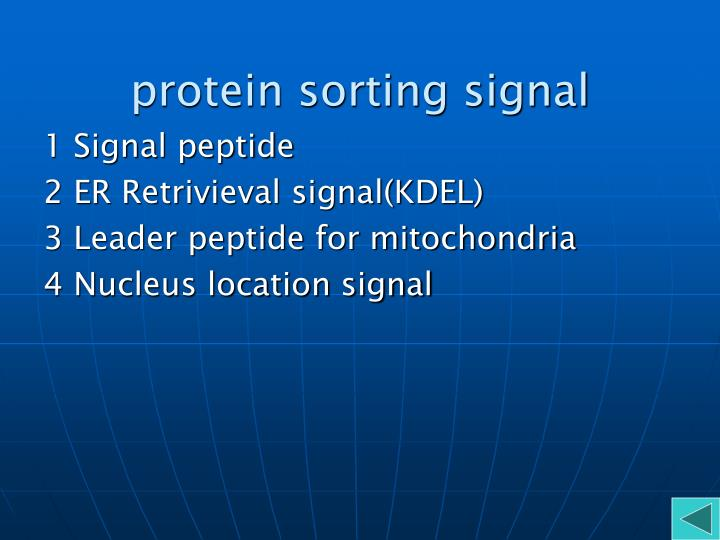protein sorting signal