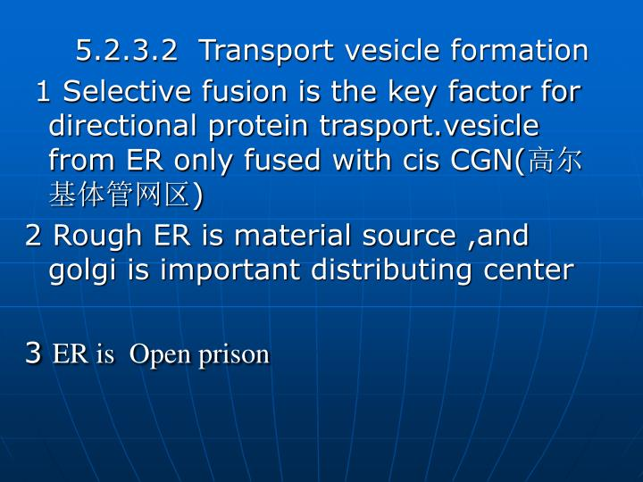 5.2.3.2  Transport vesicle formation