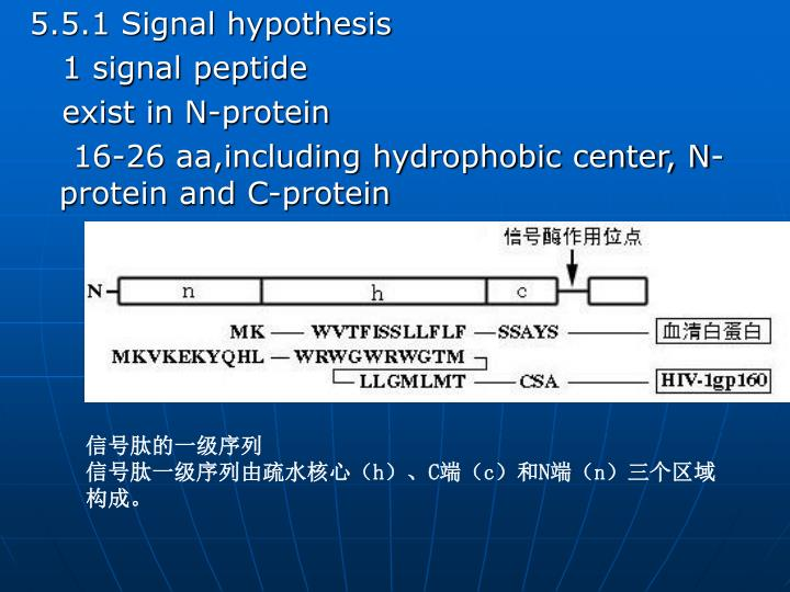 5.5.1 Signal hypothesis