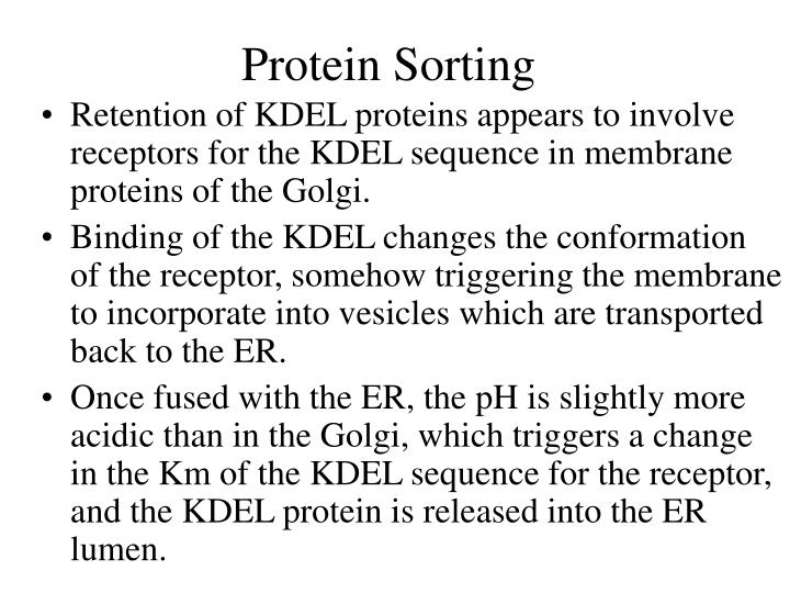 Protein Sorting