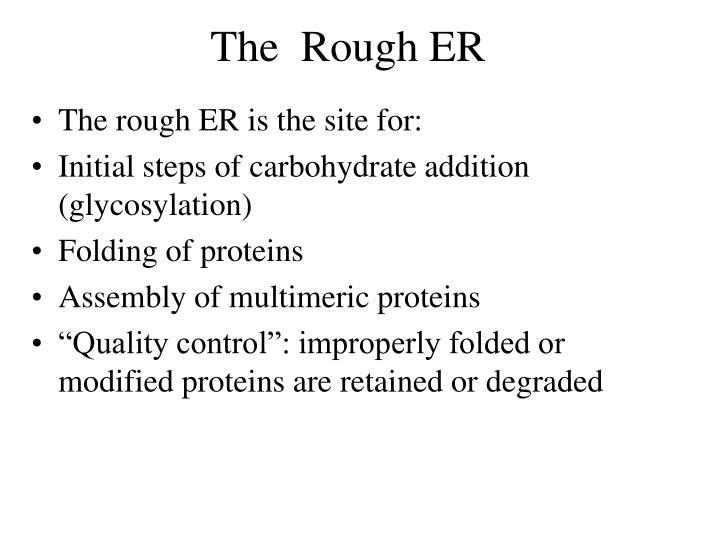 The  Rough ER