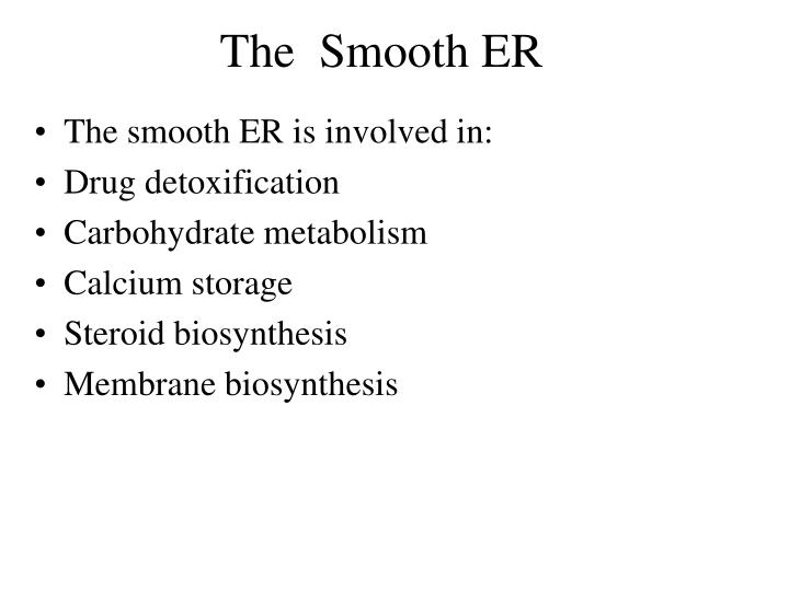 The  Smooth ER