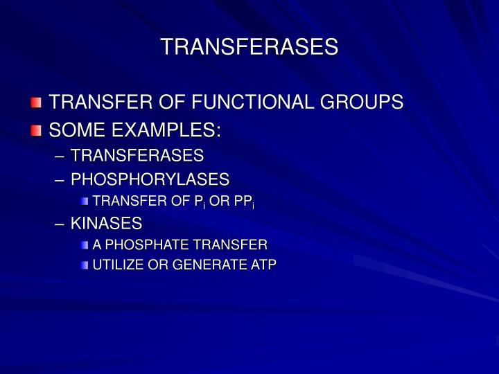 TRANSFERASES