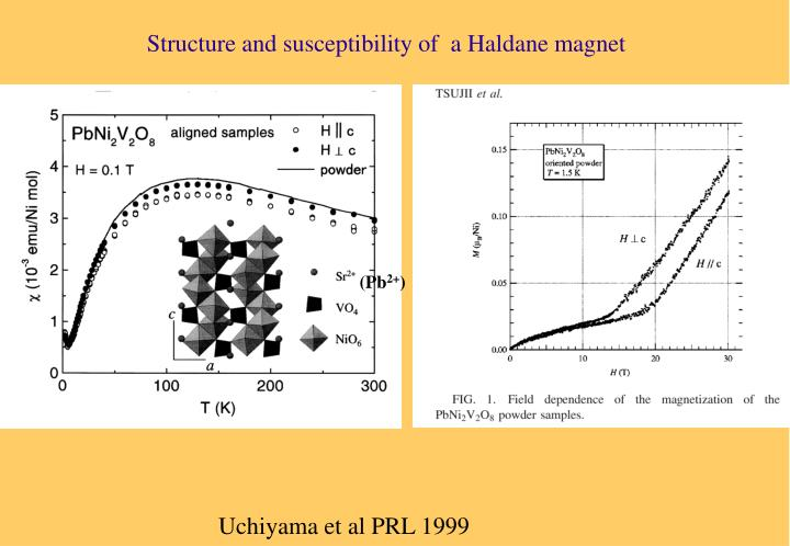 Structure and susceptibility of  a Haldane magnet
