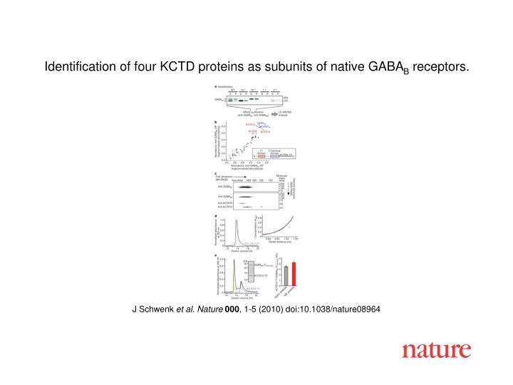 Identification of four KCTD proteins as subunits of native GABA