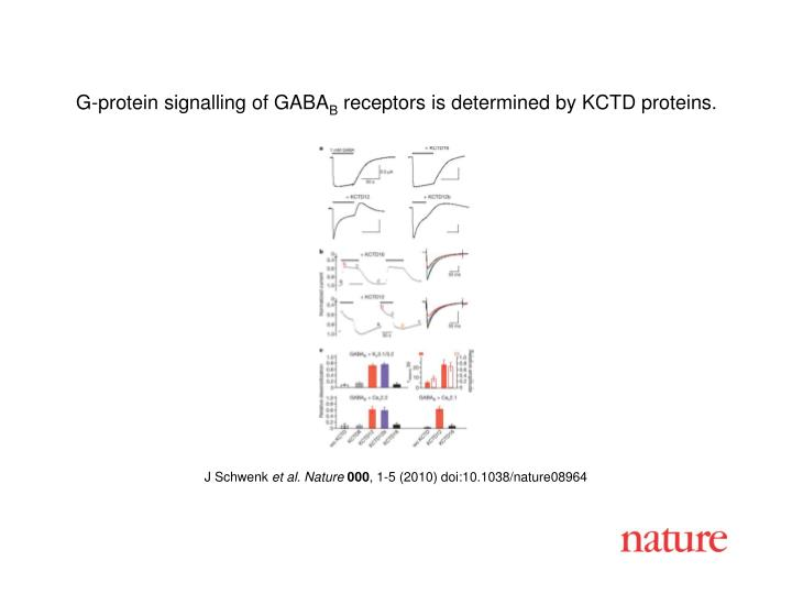 G-protein signalling of GABA