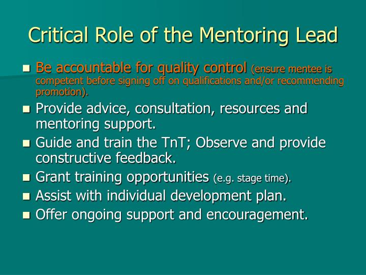 Critical Role of the Mentoring Lead