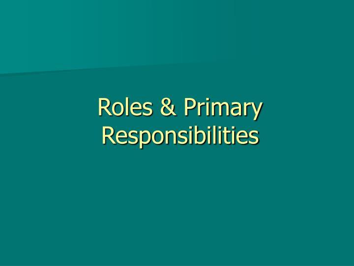 Roles & Primary Responsibilities