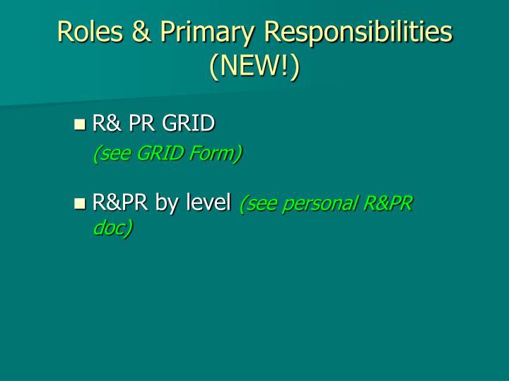 Roles & Primary Responsibilities (NEW!)