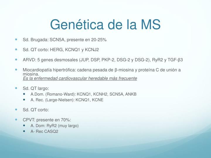 Genética de la MS