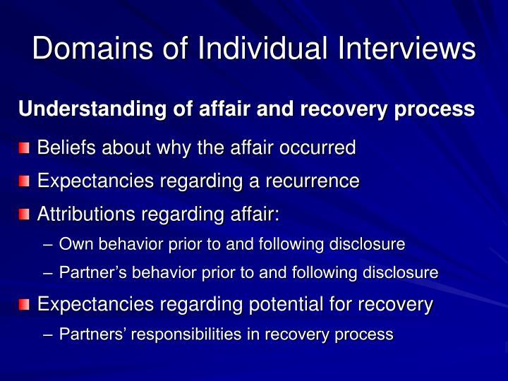 Domains of Individual Interviews