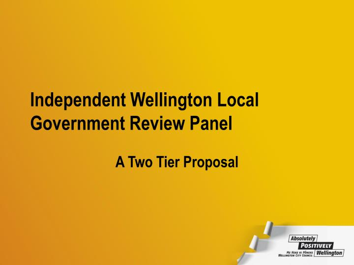 Independent wellington local government review panel