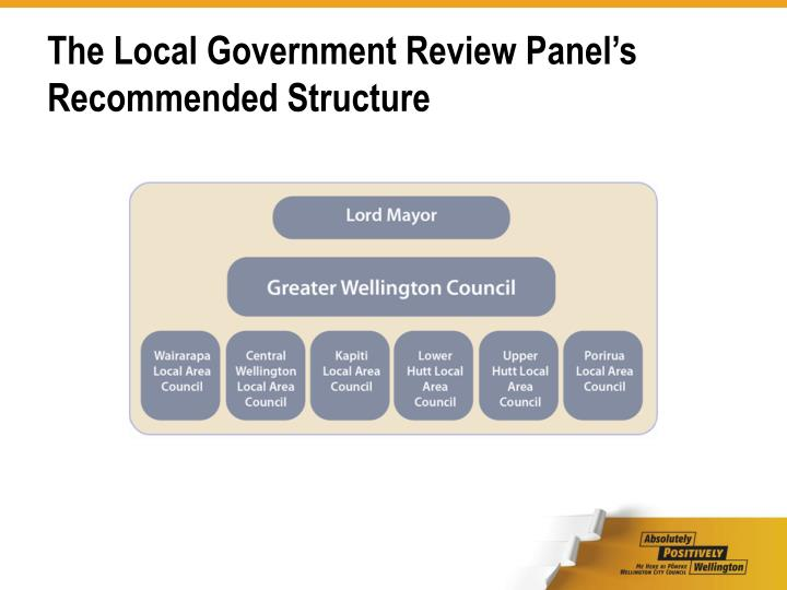 The local government review panel s recommended structure