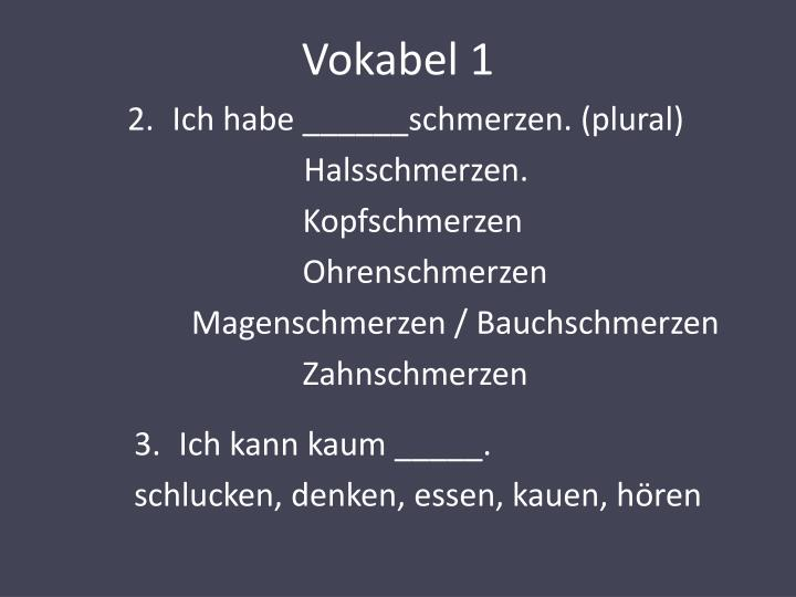 Vokabel 1