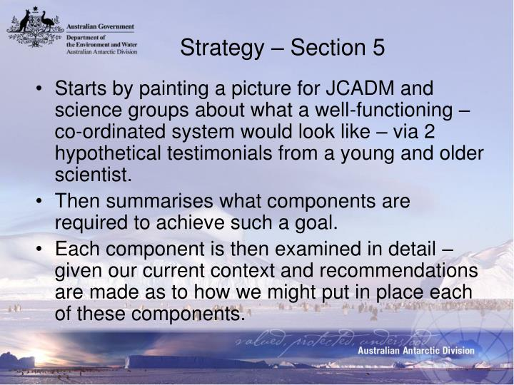 Strategy – Section 5