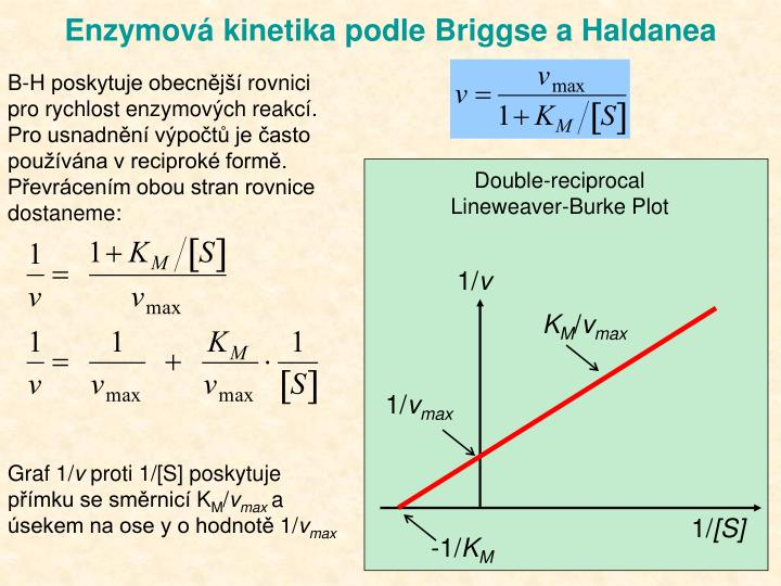 Double-reciprocal Lineweaver-Burke Plot