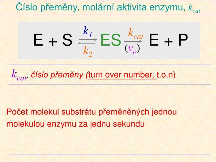 Číslo přeměny, molární aktivita enzymu