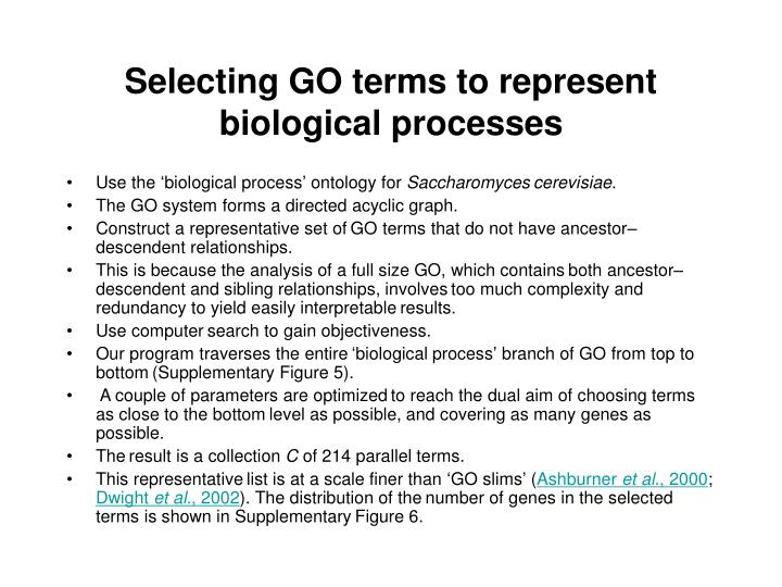 Selecting GO terms to represent biological processes