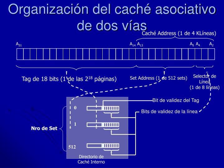 Organización del caché asociativo de dos vías