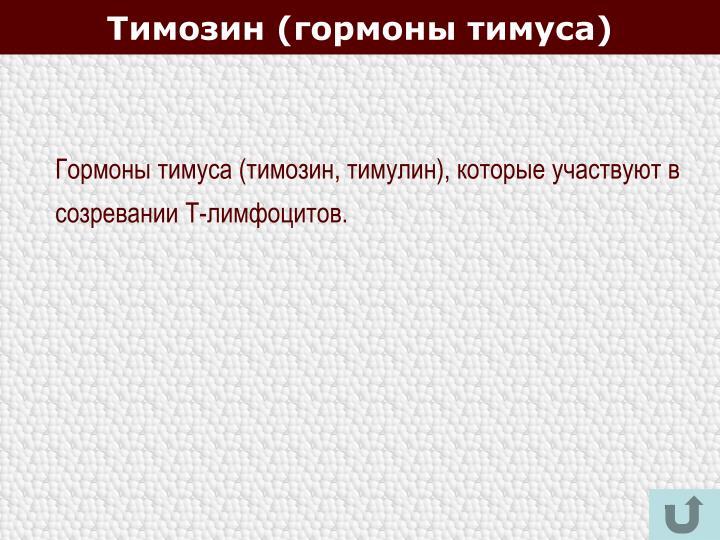 Тимозин (гормоны тимуса)