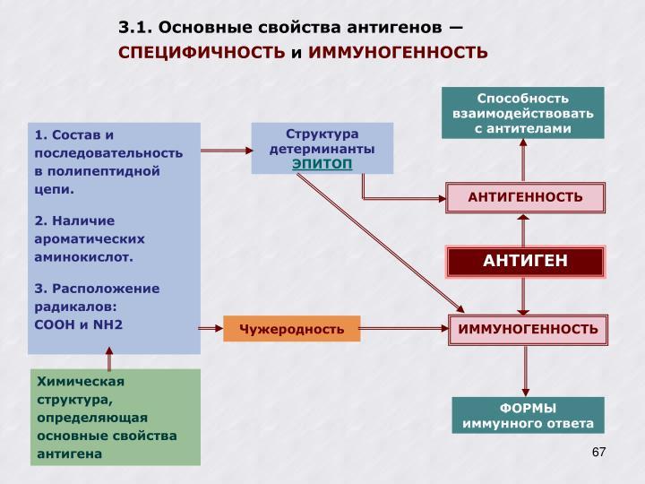 3.1. Основные свойства антигенов ―
