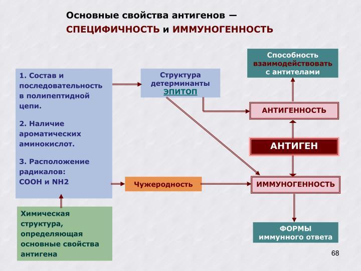 Основные свойства антигенов ―