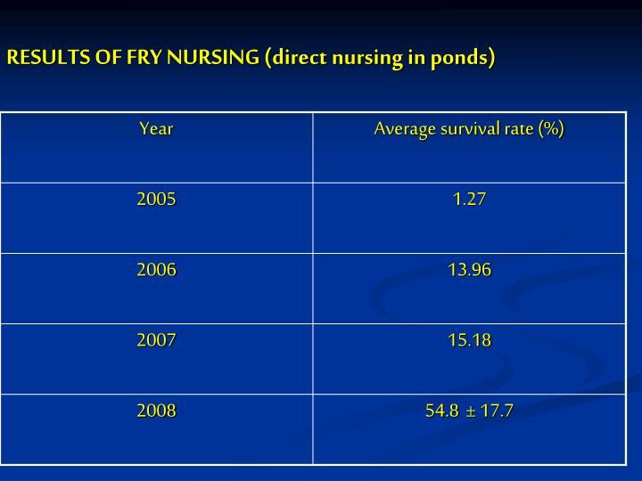 RESULTS OF FRY NURSING (direct nursing in ponds)