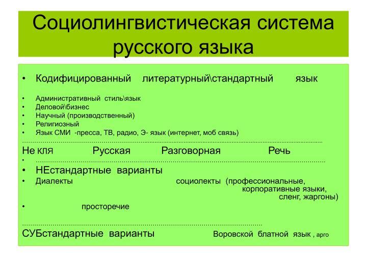 Социолингвистическая система русского языка