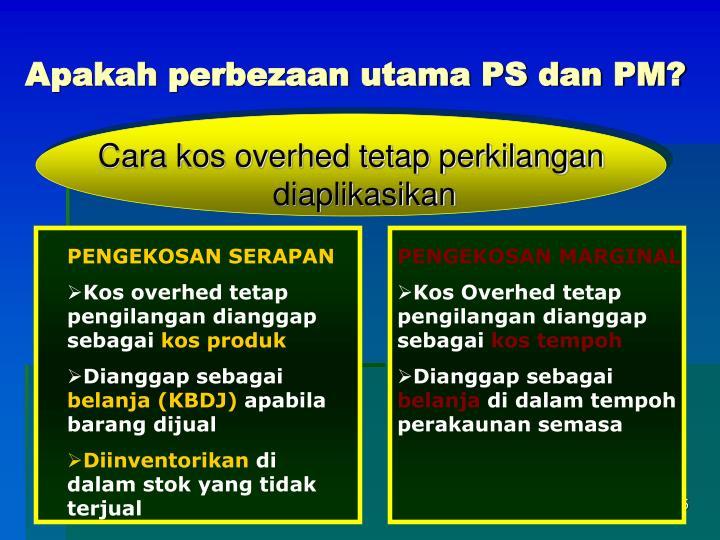 Apakah perbezaan utama PS dan PM?