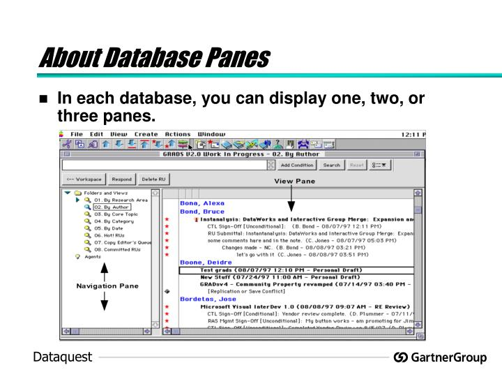 About Database Panes