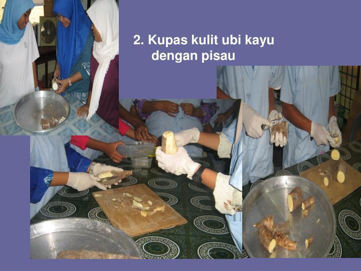 2. Kupas kulit ubi kayu