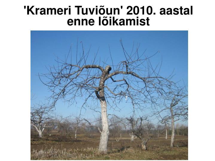 'Krameri Tuviõun' 2010. aastal enne lõikamist