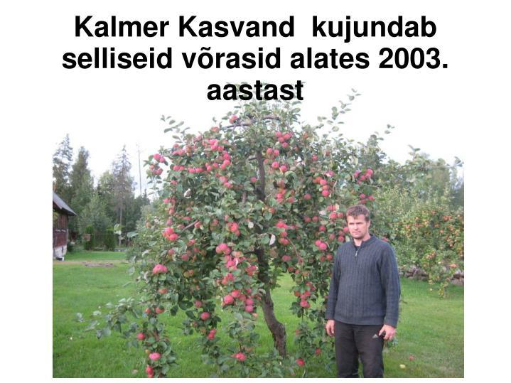 Kalmer Kasvand  kujundab selliseid võrasid alates 2003. aastast