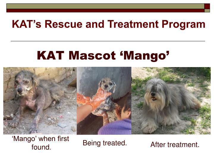 KAT Mascot 'Mango'