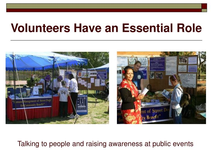 Volunteers Have an Essential Role