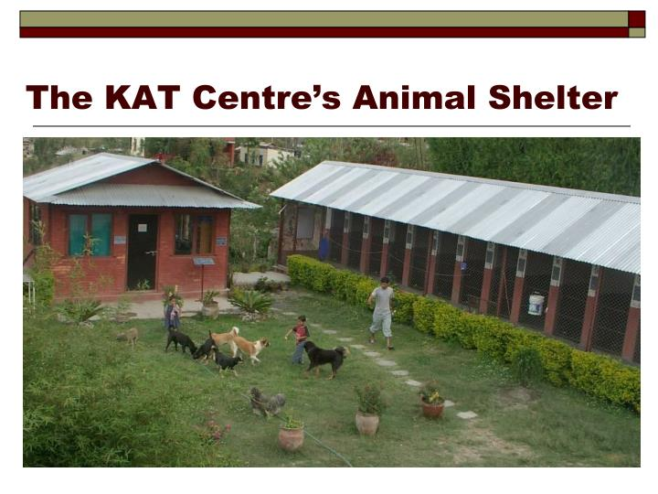 The KAT Centre's Animal Shelter