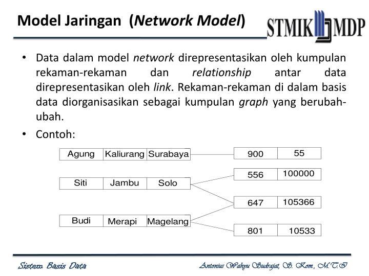 Model Jaringan  (