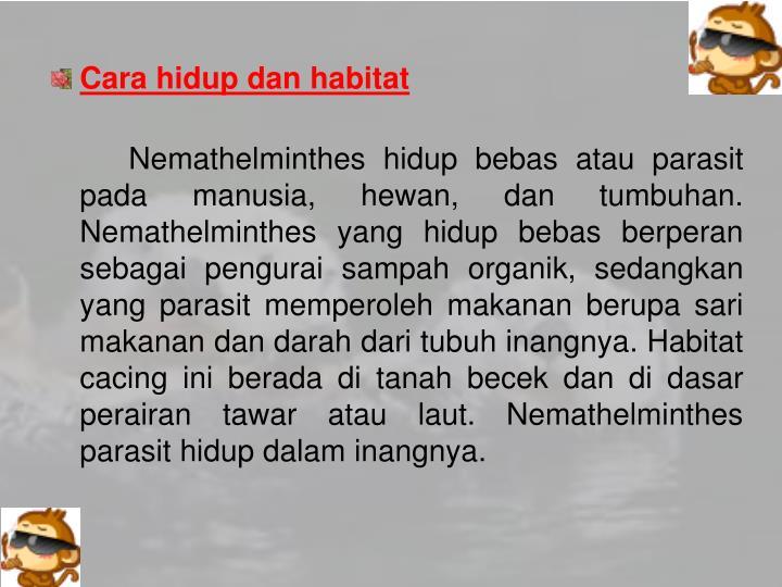 Cara hidup dan habitat
