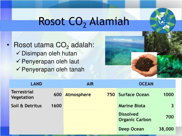 Rosot CO