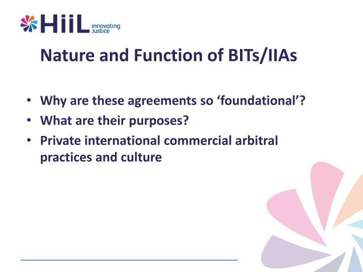 Nature and Function of BITs/IIAs